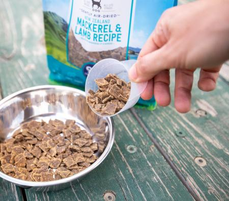 Dog diarrhea: how to avoid it when transitioning to a raw diet - primary image