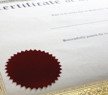 Blog post: Certificate of excellence - primary image